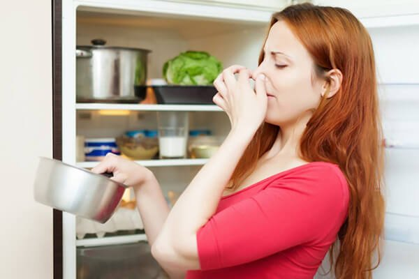 How To Remove Pungent Odours From Fridge And Freezer